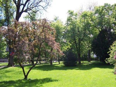 Salingarten Salinpark Stadtgarten Stadtpark
